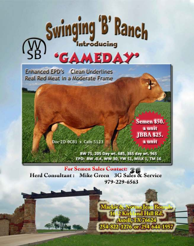 November-ad-beefmaster-cowm